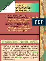 Cap 5-Micro-comportamentul Producatorului (2)
