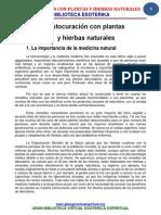 050201autocurarseconplantasyhierbasnaturales-121128085050-phpapp02