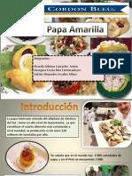 papa gastronomica.pptx