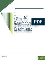 Tema 14 Reguladores Del Crecimiento. Generalidades