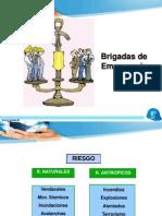 3 Estructura brigadas