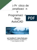 PREVIEW - Curso de personalizacion y programacion bajo AutoCAD