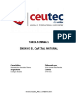 Ensayo el Capital Natural.docx