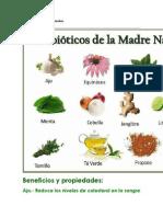 Antibiòticos de la Madre naturaleza