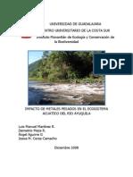 Informe Final Metales Pesados3