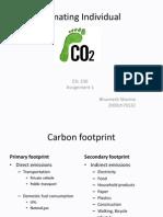 Estimating Individual Carbon Footprint