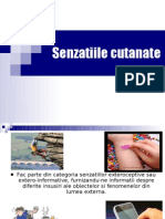 Senzatiile Cutanate 207 - Great