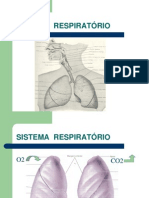 Aula Sistema Respiratorio