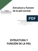 1 Estructura y Funcion 2012 i