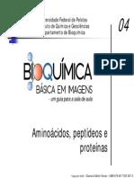 Aula Bioquimica- Aminoácidos