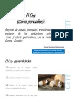 El Cuy (Cavia Porcellus) - David Quintero Maldonado