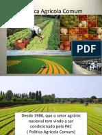A Politica Agrícola Comum 2013014.pptx