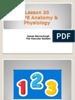 As PE Lesson 20 Cir Syst 2013-14