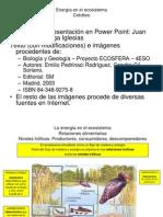 Energía en el ecosistema_4ESO