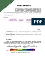tema 2 la vision.pdf