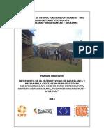 Plan de Negocios para el Incremento de la Productividad de Papa Blanca y Nativa en la Asociación de productores agropecuarios Apu Condor Tiana de Pichiupata, Distrito de Huancarama, Andahuaylas, Apurímac