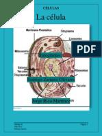 La célula1.pdf