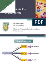 Fisiología de los Granulocitos.