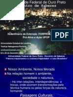 Fatores impactantes e o sistema impactador o caso brasileiro.pdf
