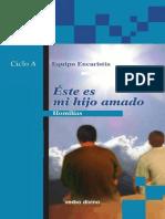 EQUIPO EUCARISTÍA, Homilías, Ciclo A, EVD, Estella 2013
