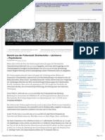Strahlenfolter Stalking - TI - Robert Christian Friedrich Walter - Bericht Aus Der Folterstadt - Aufklaerungsblog