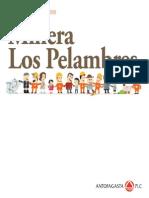Reporte Sustentabilidad MLP 2009