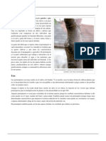 Portainjerto.pdf 4