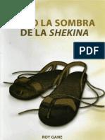 Escuela Sabatica Complemento Adultos 4 Trim 2009