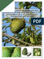 Propiedades y Beneficios de La Graviola Oguanabana (1)