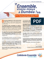 P2F DUMBEA OK.pdf