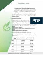 EL CULTIVO DE LA LECHUGA.pdf