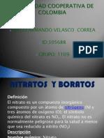NITRATOS  Y BORATOS.pptx