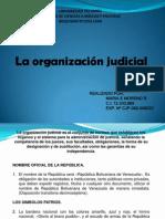 La organización judicial.pptx