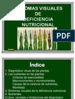 PRESENTACION SINTÓMAS+VISUALES def nutrient