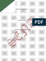 redescomputacionales1-100924062726-phpapp02