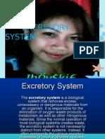 Excretory System Presentation 2