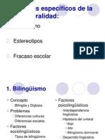 Problemas Especificos de La Interculturalidad