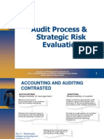 Audit Process and Risk