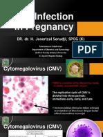 Slide Citomegalovirus