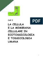 1_La_cellula_struttura_master_della_tossicologia.pdf