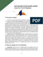 New Travel Muntenia