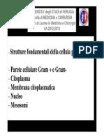 10.Strutture fondamentali della cellula procariotica (2013).pdf