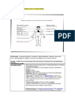 conciousness cerebrum cn and pns