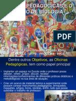 OFICINAS PEDAGÓGICAS E O ENSINO DE Biologia