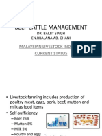 L11-Beef Cattle Management