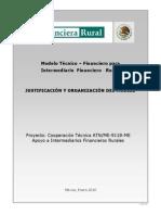 1 Modelo Técnico Financiero Justificación y Organización.pdf