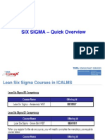 Six Sigma Overview-Nielsen Ver 1.0