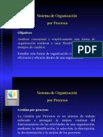 Organizacion Por Procesos