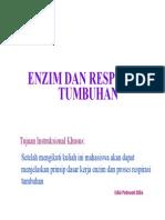 ENZIM & RESPIRASI TUMBUHAN