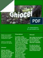 0_ghiocei